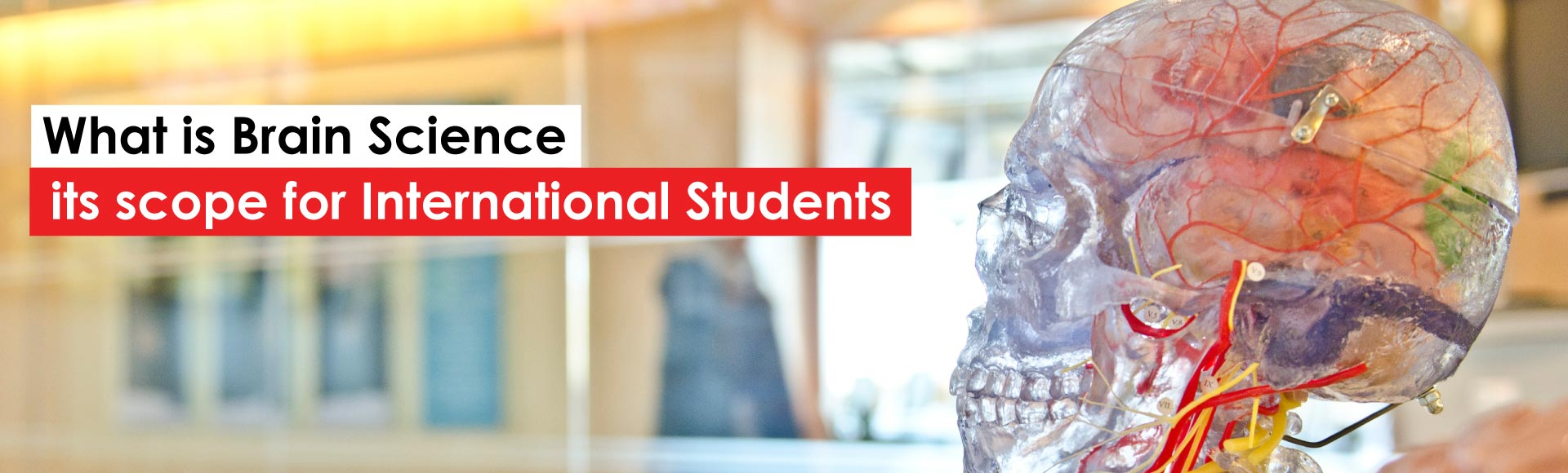 Role and Scope of Brain Science for International Students